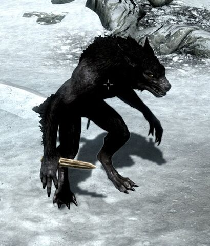 File:Werewolf wearing a dagger.jpg