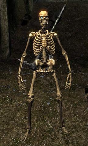 File:Skeleton (Skyrim).png