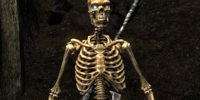 Skeleton (Skyrim)