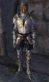 Battlehorn Man-At-Arms.png