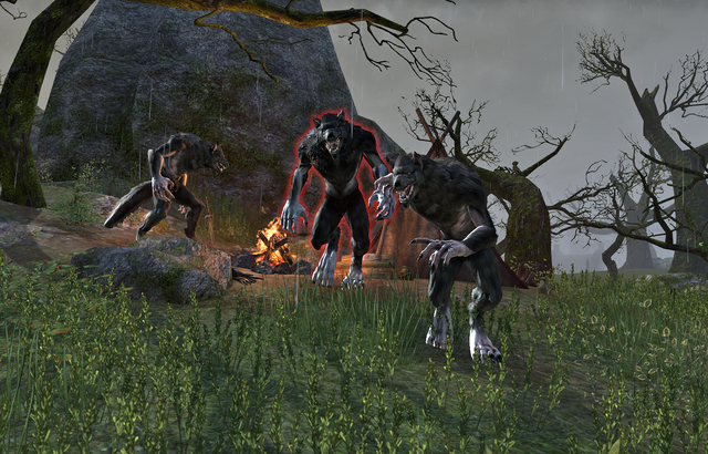 File:The Wolf's CampAttack.png