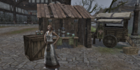 Elamusa's Marvelous Elixirs