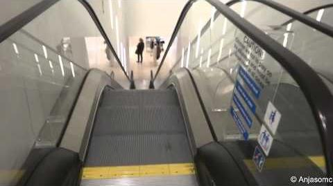 Happy Escalator Monday! Otis NextStep escalators at Zara, East Kilbride Centre-0