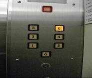 IMGP0201