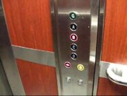 Dewhurst black buttons on Temple Lifts