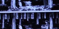 Elfen Lied Timeline - 17-30 ALB