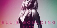 Burn (song)