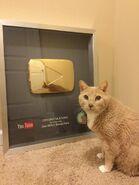 Teddy 1 million