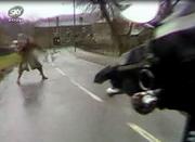 Emmie rapist runs into Smarty Garretts bike.
