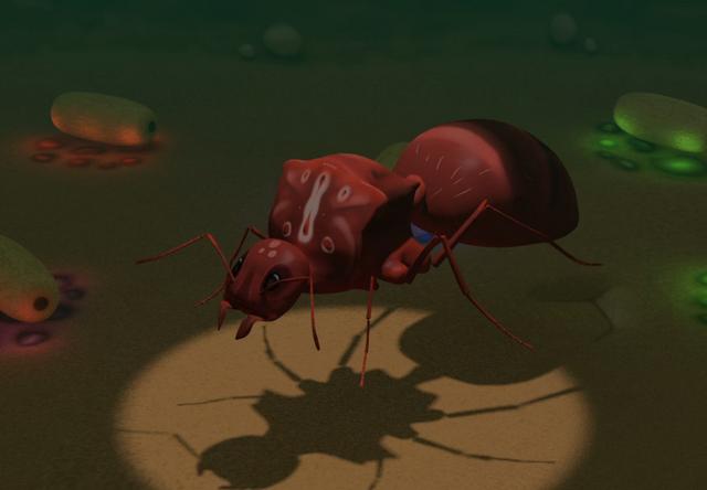 File:Gene-stealer queen ant.png