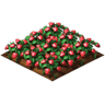 Crop Strawberry Grown SW Icon