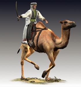 Camel Nomads