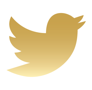 File:Twitter2 Gold Icon.png