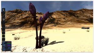 PlasmaX10 Plant
