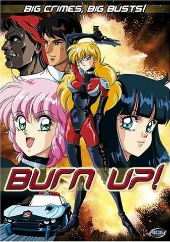 File:Burn-Up.jpg