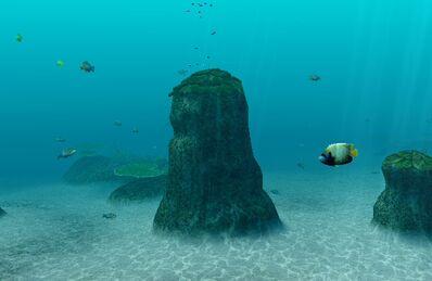 Gatama Atoll Gatama's Navel