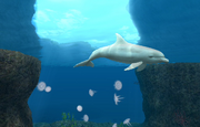 Wikia-Visualization-Main,endlessocean