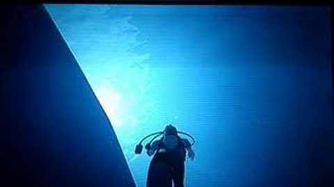 Endless Ocean (Wii) - Pirate Ship, Sunken Ship