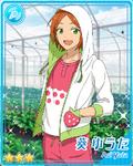 (Sturdy Berry) Yuta Aoi Bloomed