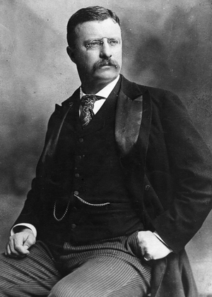 Theodore Roosevelt Based On