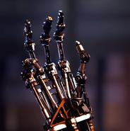 Terminators robo arm