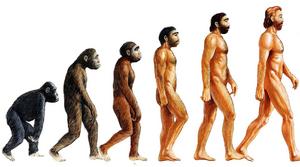 Evolving Man Based On