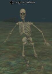 A sogbone skeleton