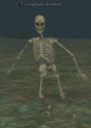 a sogbone skeleton | everquest 2 wiki | fandom powered by wikia, Skeleton
