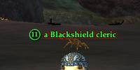 A Blackshield cleric (Timorous Deep)