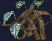 Wild vine (Visible)