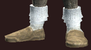 Adept's Shoes of Knowledge (Equipped)