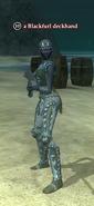 A Blackfurl deckhand (dark elf)
