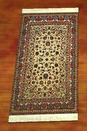 A pristine canvas rug (Visible)