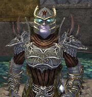 Race wraithguard