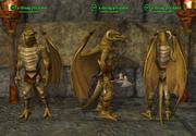Droag (Assassin) Placed