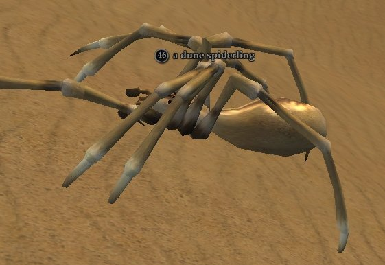 File:Dune spiderling.jpg
