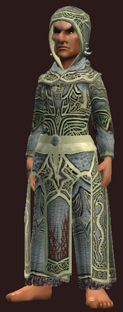 Thaumaturge's Robe of the Archcaster (Equipped)