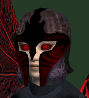 Radiant Seer's Coif (Equipped)