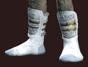 Invoker's Shoes of the Citadel (Equipped)