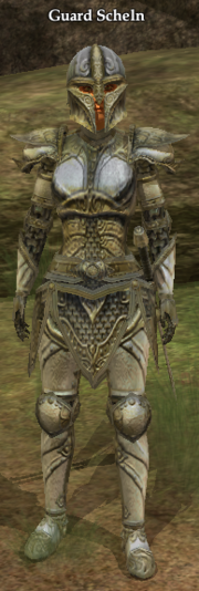 Guard Scheln