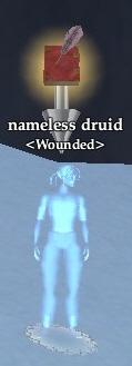 Nameless druid (Kylong Plains)