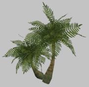 Dshinn Palms (Visible)