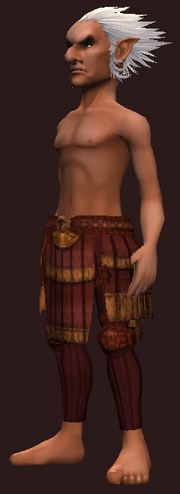 Cenobite's Breeches of the Citadel (Equipped)