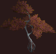 Russet Vesspyr Willow (Placed)