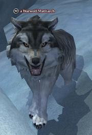 A Warwolf Matriarch