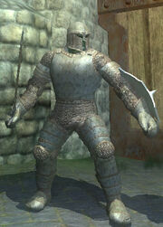 Carbonite Plate Armor, Equipped