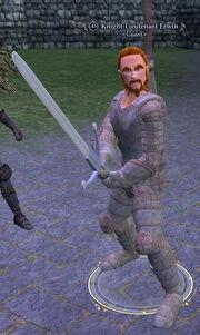 Knight-Lieutenant Erwin