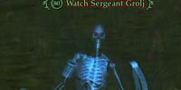 Watch Sergeant Grolj
