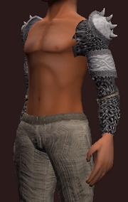 Ritualist's Darkened Rune Spaulders (Equipped)