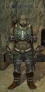 A Zek warrior